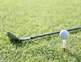 伊豆アニマルキングダムのゴルフの画像