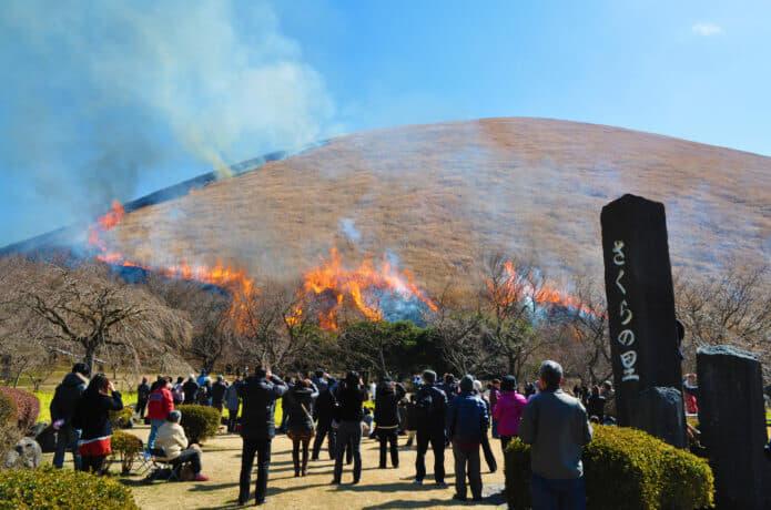 大室山の山焼きの画像