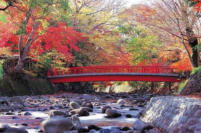 修善寺近くの橋と桂川