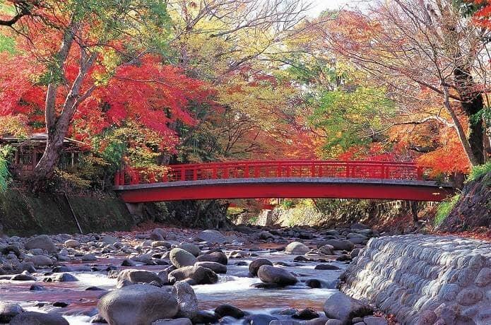 桂川にかかる朱色の橋