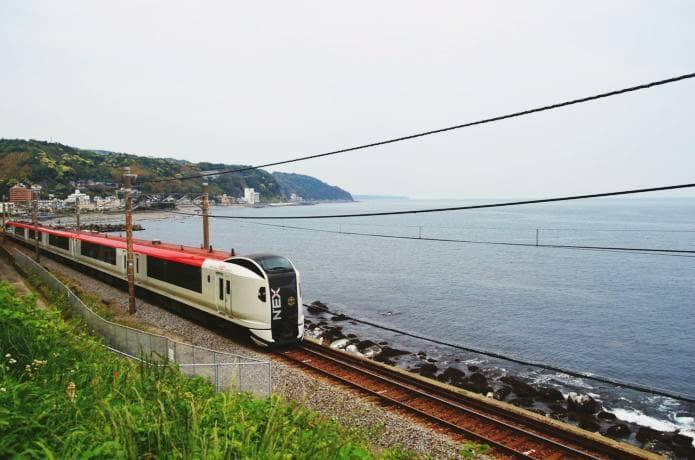 伊豆急行線の特急列車