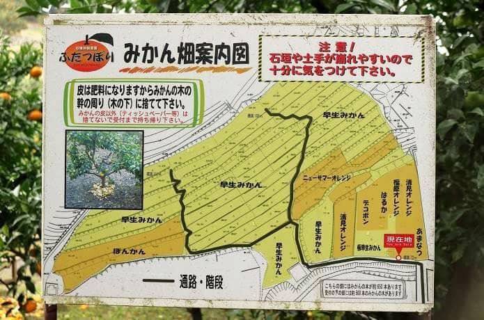ふたつぼりみかん農園マップ