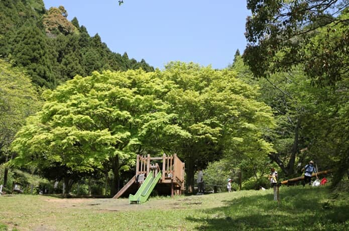 姫の沢公園の画像