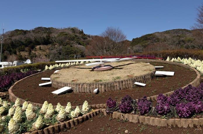 道の駅の花の三聖苑伊豆松崎の画像