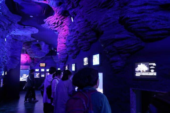 深海水族館 1階