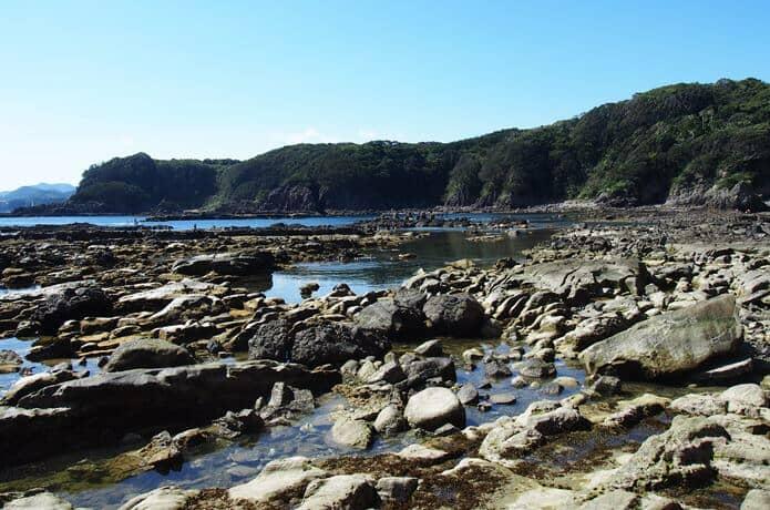 恵比須島 磯