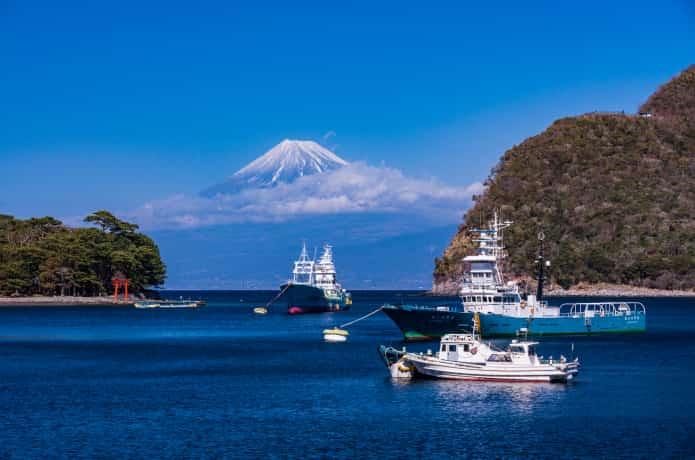 沼津から望む富士山