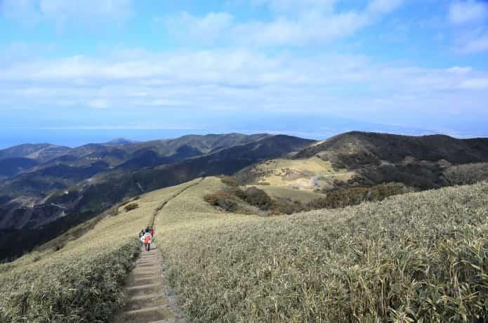 達磨山高原