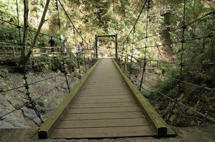 河津七滝 吊り橋