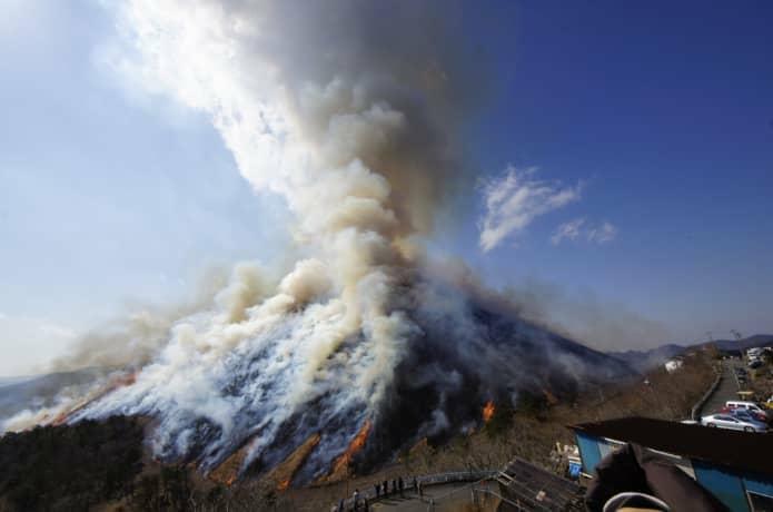 大室山 山焼き