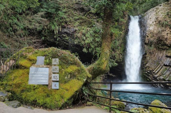 浄蓮の滝 シダ