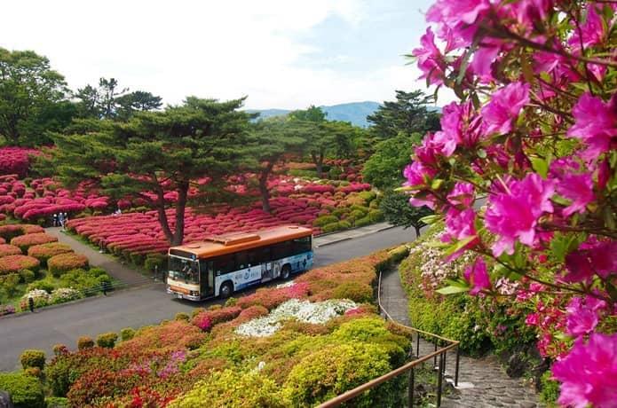 小室山 東海バス