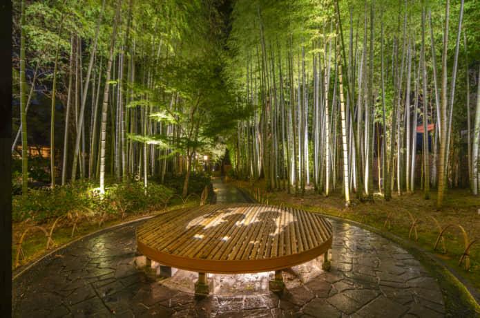 竹林の小径 修善寺 夜