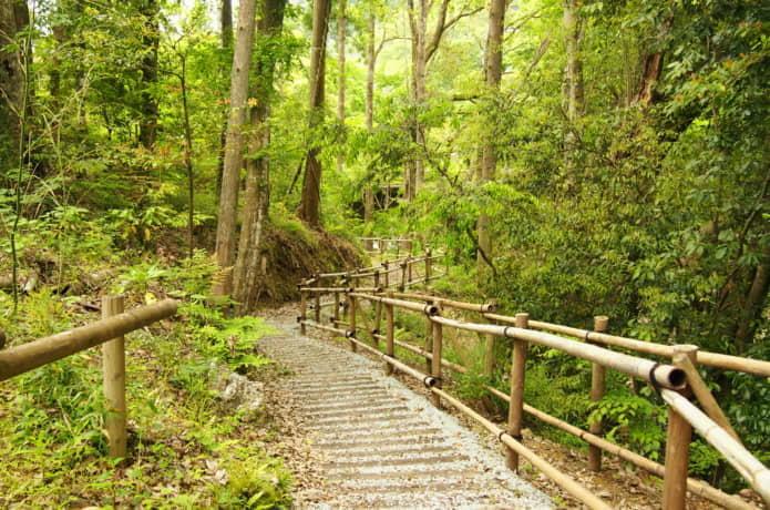 湯ヶ島温泉 遊歩道