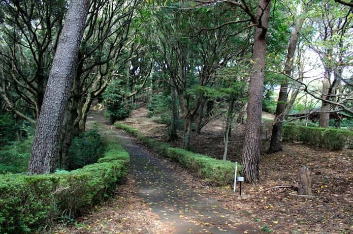 伊豆山恋の森公園