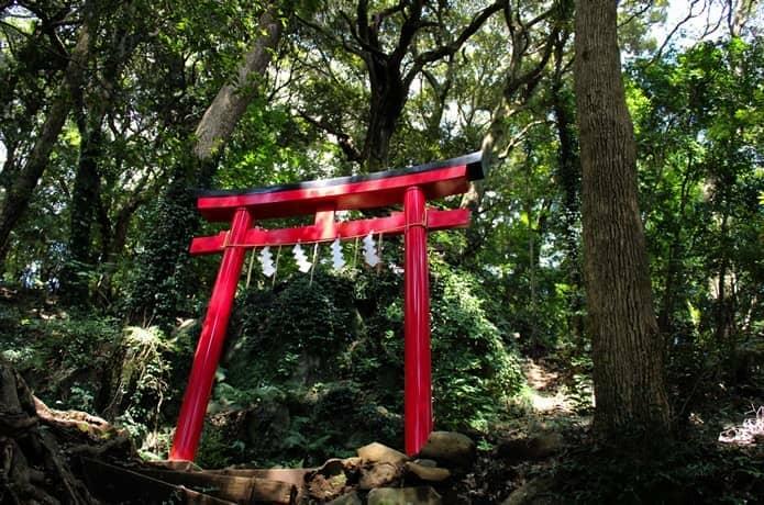 伊豆山神社 山道 朱色の鳥居
