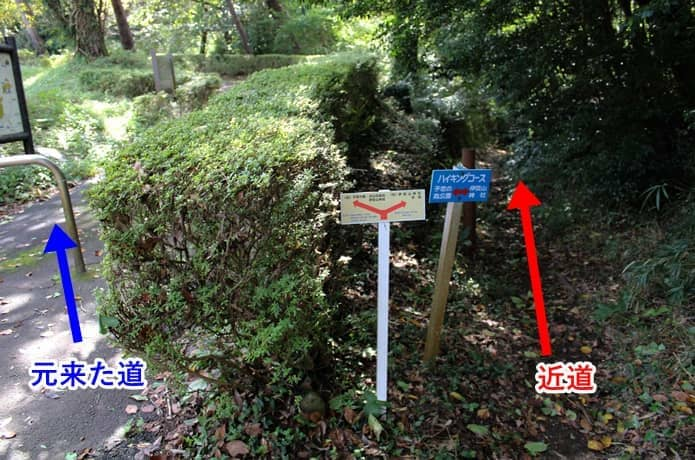 伊豆山神社への近道